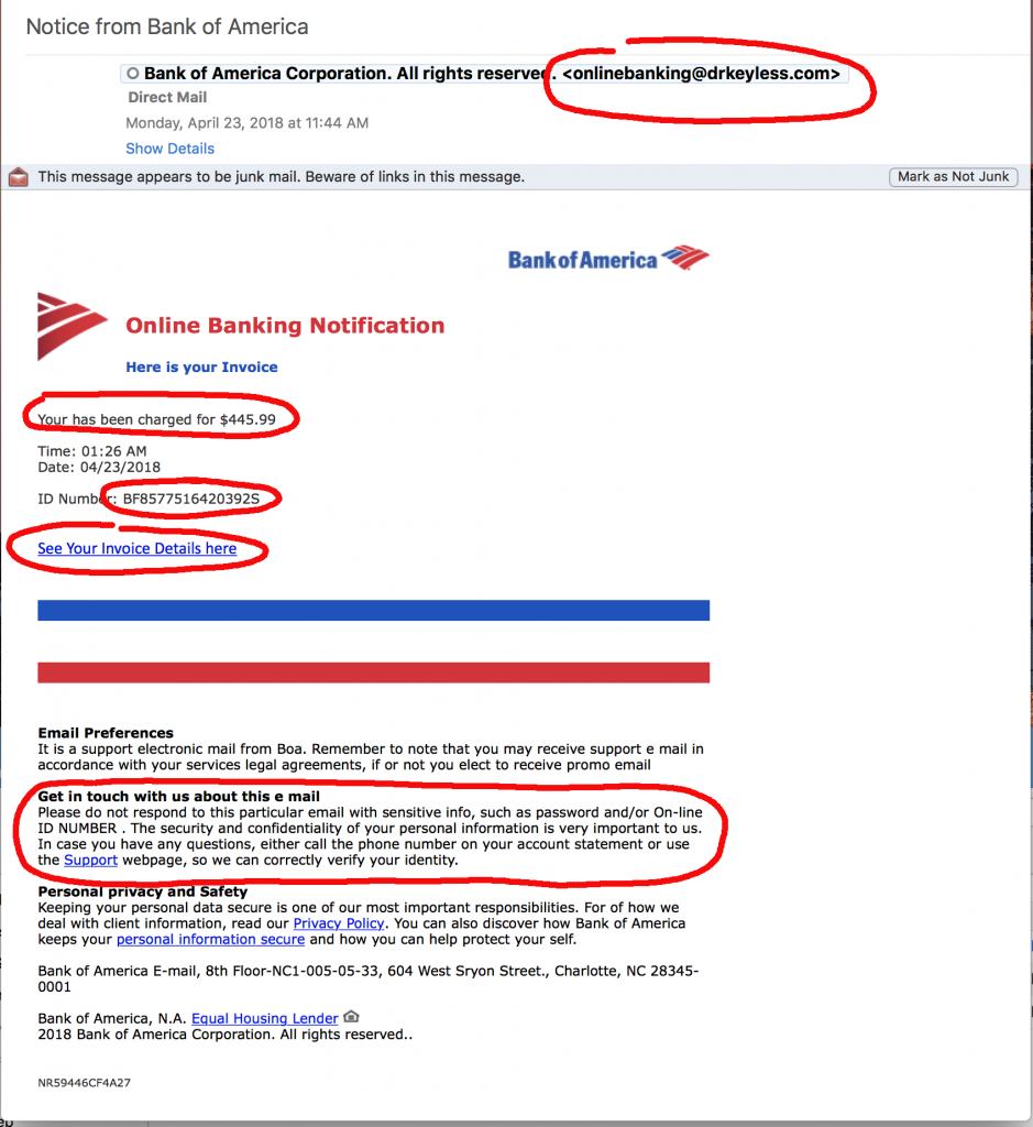 email bank of america fraud department